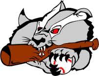 Badgers_logo.png