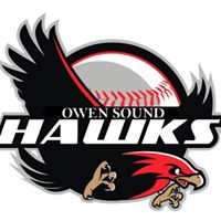 Logo for Owen Sound Minor Baseball