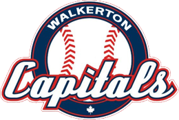 Logo for Walkerton Minor Baseball
